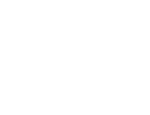 The Bear Track Outfitters Logo